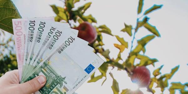 apfelbaum_und_geld-1