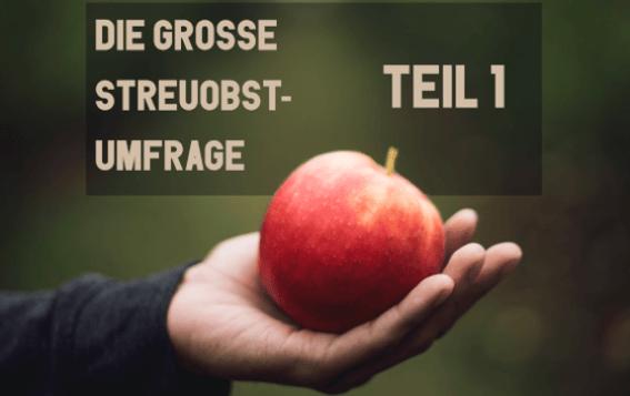 Apfel in einer Hand