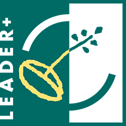 Leader_Plus-logo-D42955C600-seeklogo.com