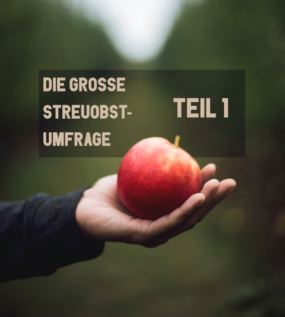UMFRAGETITLEBLATT_T1-komp